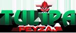 Tulipa Peyzaj